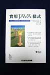 Java Champions